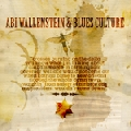 Abi Wallenstein: Blues Culture ONE